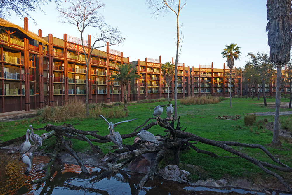 Disney Deluxe Resort best - Disney's Animal Kingdom Lodge