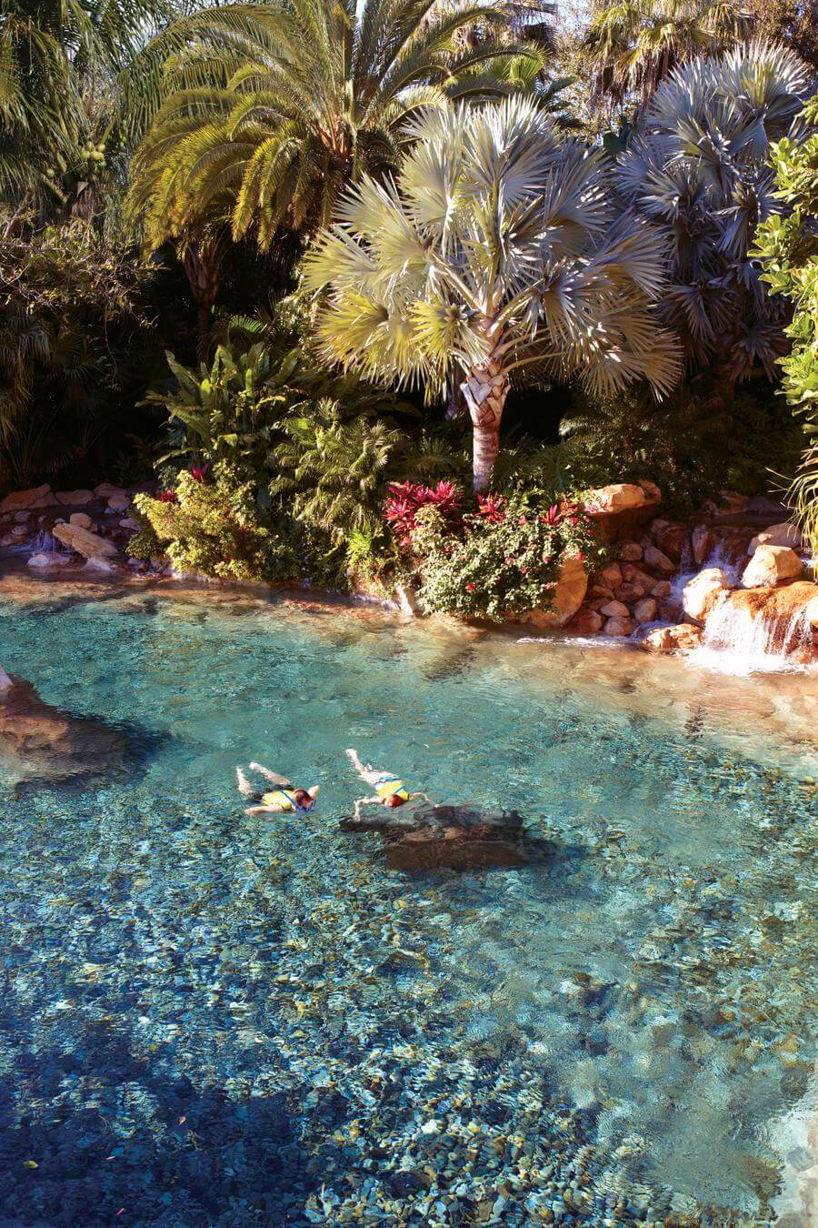 Discovery Cove Seaworld Waterpark Discount Tickets