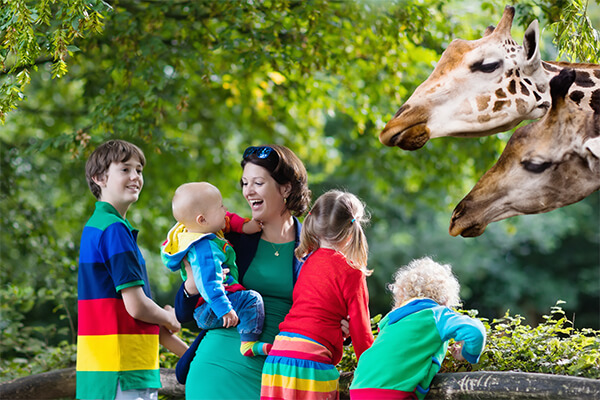 San Diego zoo for families