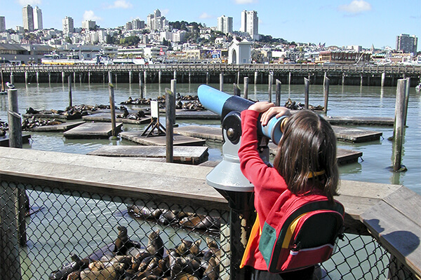 San Francisco pier sightseeing